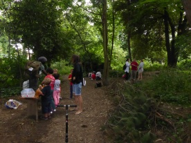 Nature perfume free family event West Norwood Lambeth London-2